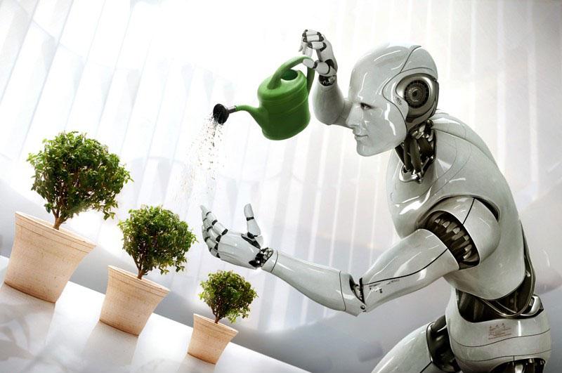 job-furat-de-roboti